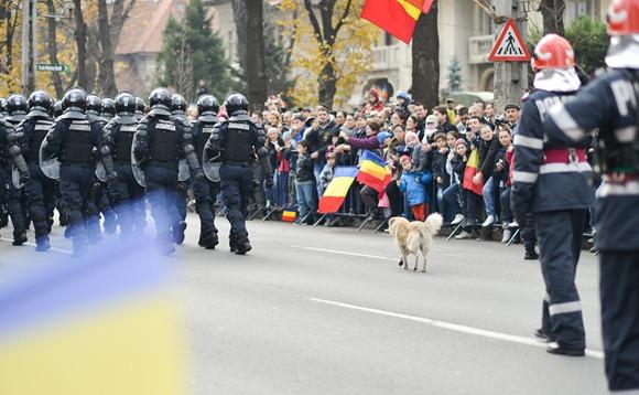 1-decembrie-ziua-romaniei-bucuresti-11